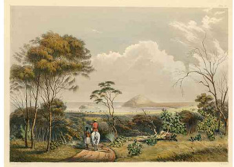Encounter Bay  George French Angas (State Library of South Australia )